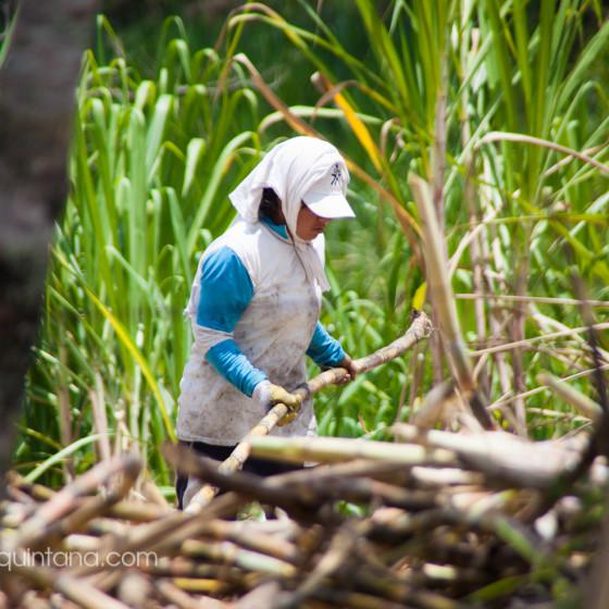 Fotografía documental, el cañaduzal en el Huila